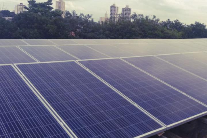 Rede Cidadã e Órigo firmam parceria para sustentabilidade
